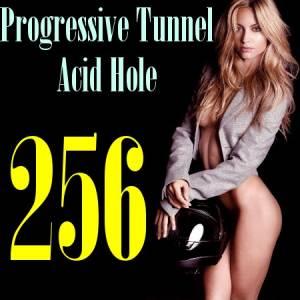 Скачать бесплатно Progressive Tunnel - Acid Hole 256