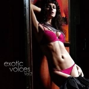 Скачать бесплатно Exotic Voices Vol.2 (2010)
